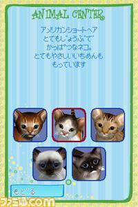 h-104_63601_kyatu07.jpg